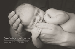 black and white of newborn sleeping in daddys arms