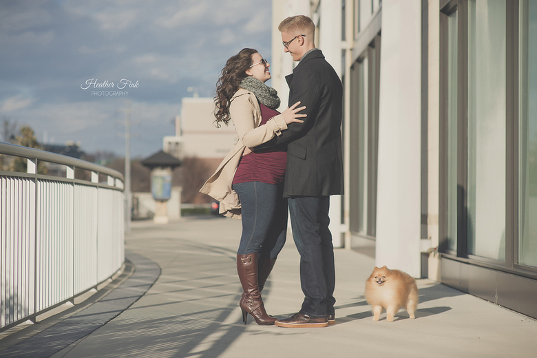 pomeranian joining a maternity session in the city